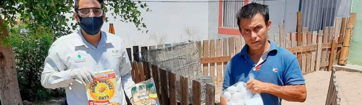 AYUDA MUNICIPIO CON DESPENSAS A 5 MIL FAMILIAS VULNERABLES