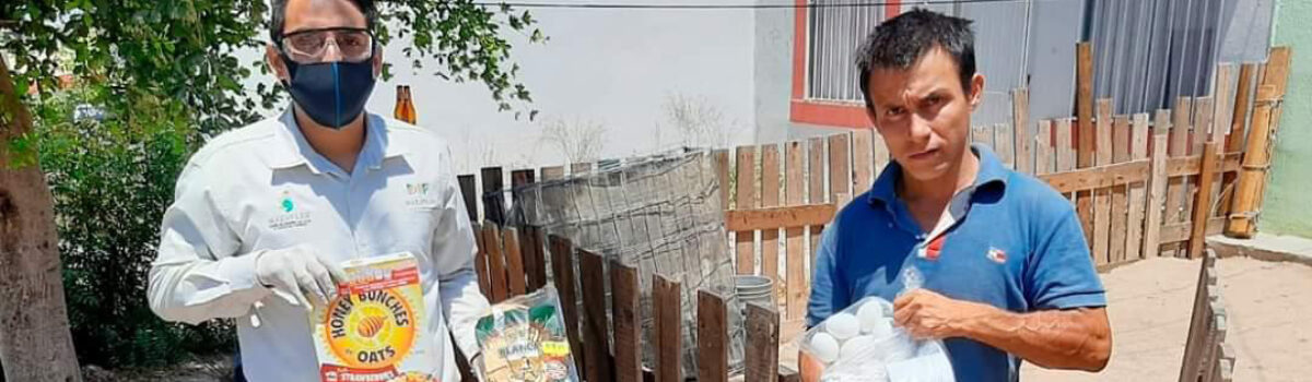 AYUDA MUNICIPIO CON DESPENSAS A 5 MIL FAMILIAS VULNERABLES