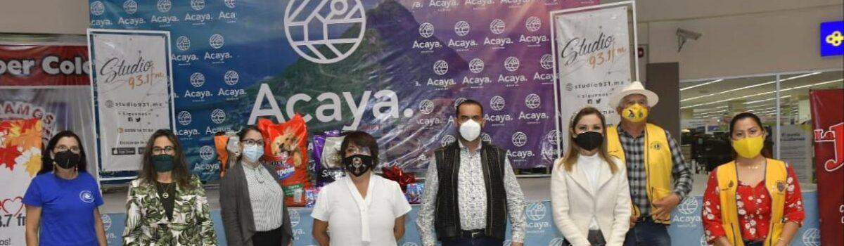 Lleva a cabo Municipio de Mazatlán la Jornada por el Bienestar Animal en Plaza Acaya