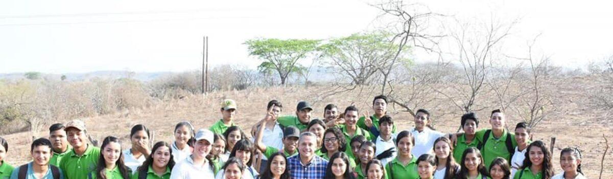 Con reforestación simultánea conmemoran el día mundial del medio ambiente en Rosario.